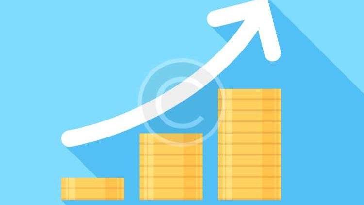 <b>Business Growth:</b> Sed vel tempus libero.